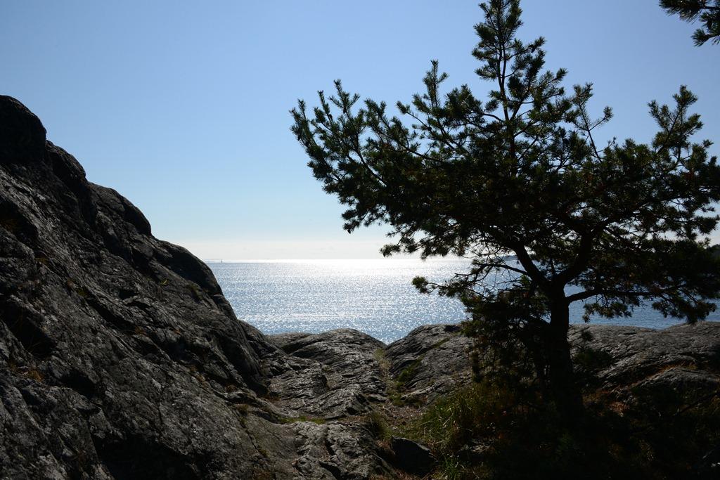 strandvägen-5