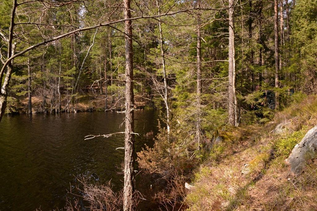Transjöns norra ände